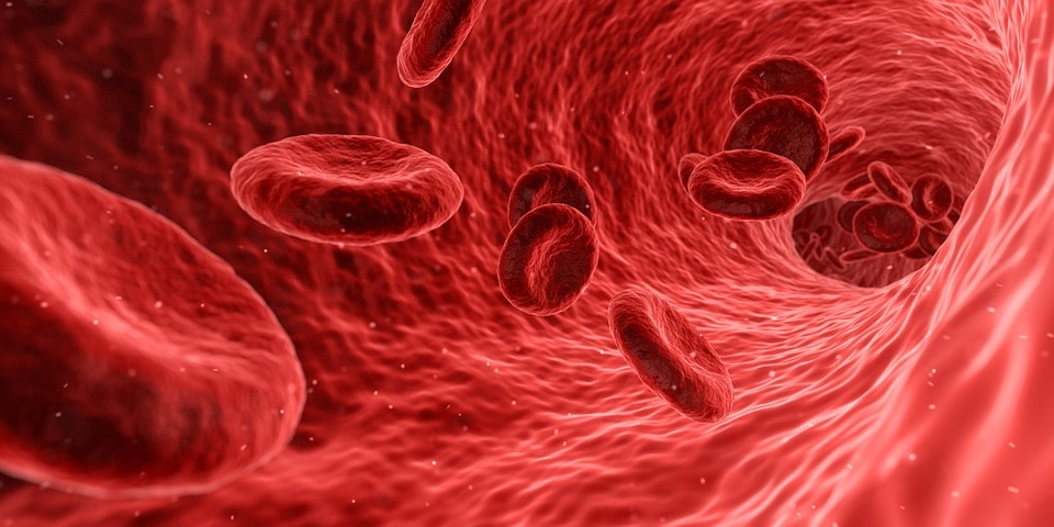 Плазмолифтинг тромбоцитами крови
