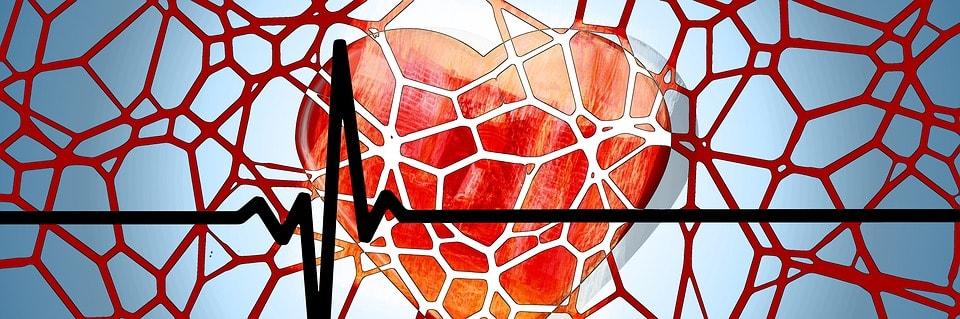 Влияние алкоголя на сердце при стенокардии